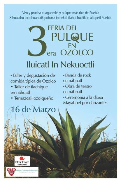 pulque ozolco