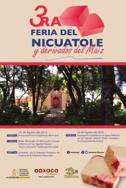 feria del nicuatole 2014